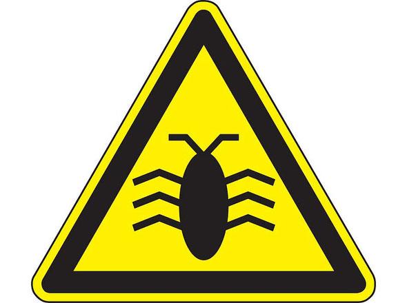 Warning! Software Bug!