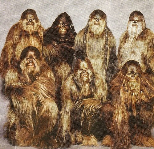 star wars wookie family