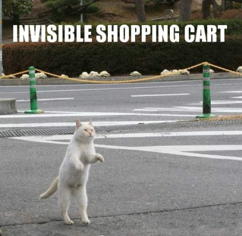 cat invisible shopping cart