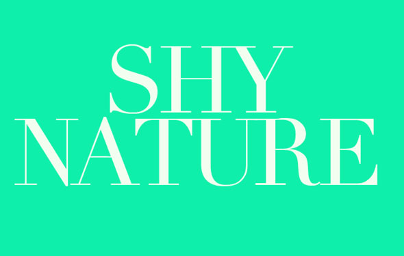 Indie rock band SHY NATURE: Playing Paperboy, fridge destruction, and their crisp driving single Deadly Sin