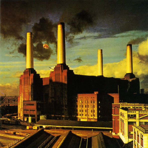 pink floyd animal album cover